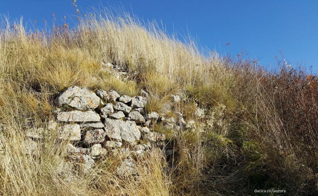piatra-craivii_zid-medieval
