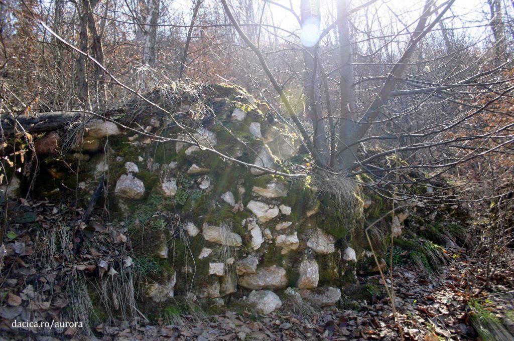 banita_zid-cu-mortar